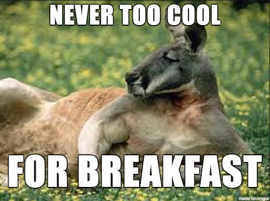 sexy_breakfast_kangaroo